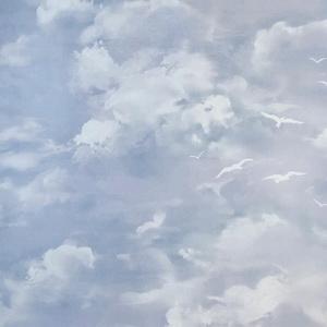 5604-14, небо, обои небо, as creation
